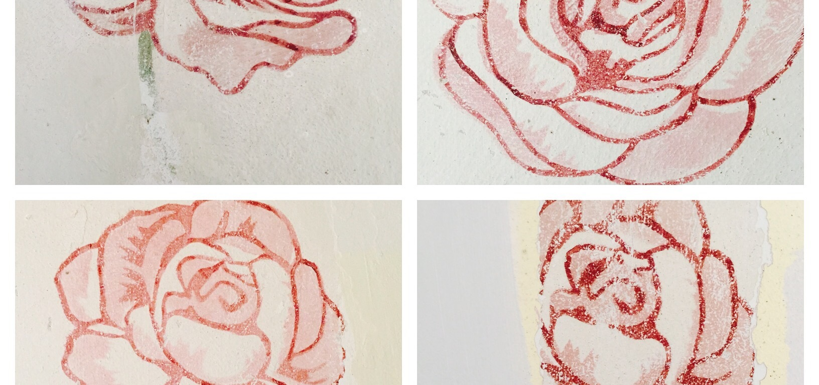 Walton roses